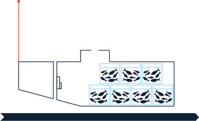 wild-caught-fish-1-step3-1-mobile